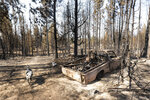 A dog named Zippy walks past a destroyed truck Thursday, July 22, 2021, belonging to her owner, Gauge Clark, whose home was destroyed in the Bootleg Fire near Bly, Ore. (AP Photo/Nathan Howard)
