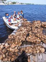 In a July 25, 2019 photo, students load bags of baby oysters attached to whelk shells onto boats in preparation for putting them into the water in Ocean Gate, N.J. People involved in similar oyster projects around the world say that in addition to helping clean water and stabilize shorelines, the projects provide a way to let volunteers help the environment in a tangible, easily understandable way. (AP Photo/Wayne Parry)