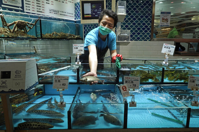 A fish from MoVertical Farm, is shown at a supermarket in Hong Kong, Thursday, Sept. 24, 2020. Operating on a rented 1,000 square meter patch of wasteland in Hong Kong's rural Yuen Long, Arthur Lee's MoVertical Farm utilizes around 30 of the decommissioned containers, to raise red water cress and other local vegetables hydroponically, which eliminates the need for soil. A few are also used as ponds for freshwater fish, with the bounty sold to local supermarkets in this crowded city of 7.5 million that is forced to import most of its food. (AP Photo/Kin Cheung)