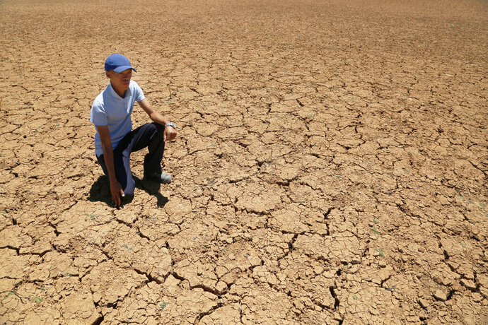 In this photo taken on Thursday, Nov. 14, 2019, Paul van Wyk, a small scale farmer, kneels down in a cracked bed of a water pan in Vosburg, South Africa. The worst drought some farmers have seen in decades is affecting much of southern Africa. The United Nations says more than 11 million people now face crisis levels of food insecurity. (AP Photo/Denis Farrell)