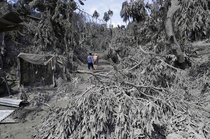 In this Jan. 14, 2020, photo, residents walk at their volcanic ash covered village in Laurel, Batangas province, southern Philippines, as Taal volcano continues to spew ash. So far no one has been reported killed in the eruption, but the disaster is spotlighting the longstanding dilemma of how the government can move settlements away from danger zones threatened by volcanoes, landslides, floods and typhoons in one of the world's most disaster-prone countries. (AP Photo/Aaron Favila)