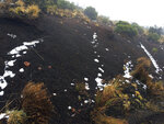 Black volcanic cinders have a dusting of snow at the Polipoli State Recreation area on the slopes of Haleakala near Kula on the Hawaii island of Maui, Monday, Feb. 11, 2019. A strong storm hitting Hawaii has knocked out power, brought down tree branches, flooded coastal roads — and even brought snow. Snow is not unheard of in mountainous parts of the tropical island chain, but officials say the coating at 6,200 feet (1,900 meters) at the state park on Maui could mark the lowest-elevation snowfall ever recorded in the state. (Brent Edwards via AP)