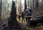 In this Feb. 1, 2018 photo, trail crew workers hike the Pacific Crest Trail as it winds through the burn area of the Eagle Creek fire in the Columbia River Gorge near Portland, Ore. Two years after a fire consumed trails and forests in the scenic Columbia River Gorge, the popular Eagle Creek Trail is in the final phases of reopening to the public. Stan Hinatsu with the U.S. Forest Service tells The Oregonian that the 13-mile (21-kilometer) trail could open as early as fall 2019 or as late as next summer, depending on weather and assessments from forest officials. (Jamie Hale/The Oregonian via AP)