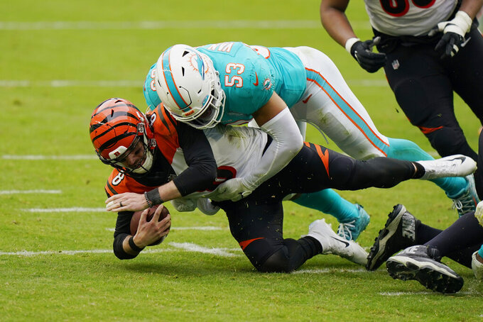 Miami Dolphins middle linebacker Kyle Van Noy (53) sacks Cincinnati Bengals quarterback Brandon Allen (8) during the second half of an NFL football game, Sunday, Dec. 6, 2020, in Miami Gardens, Fla. (AP Photo/Wilfredo Lee)