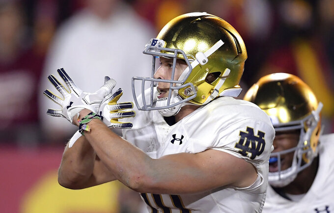Notre Dame wide receiver Chris Finke gestures after scoring a touchdown during the first half of the team's NCAA college football game against Southern California on Saturday, Nov. 24, 2018, in Los Angeles. (AP Photo/Mark J. Terrill)