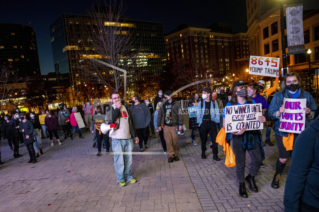 Election 2020 Protests Michigan
