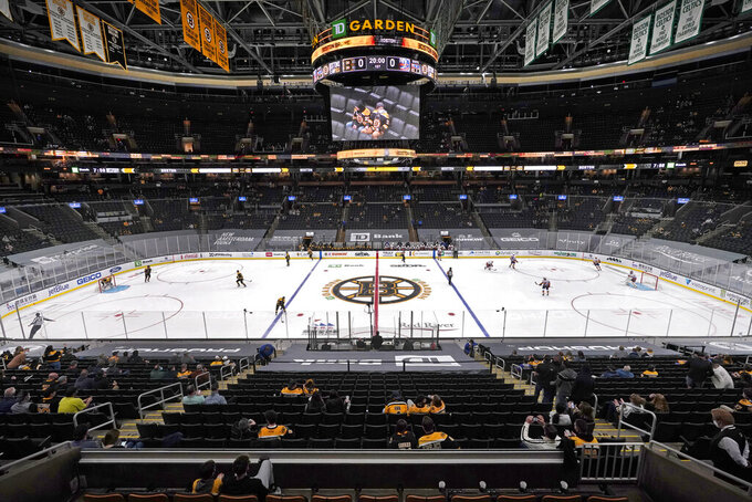 Hockey fans sit socially distanced in TD Garden before an NHL hockey game between the Boston Bruins and the New York Islanders, Thursday, March 25, 2021, in Boston. This is the first game of the 2021 season allowing limited fan attendance in the arena. (AP Photo/Elise Amendola)