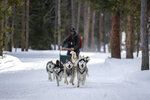 Dog-sledding guide Tim Thiessen of Leadville brings his huskies down a trail off Tiger Road on Thursday, Jan. 16, 2020 at Good Times Adventures in Breckenridge, Colo. (Liz Copan/Summit Daily News via AP)