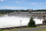 FILE - In this June 27, 2012, file photo, water flows through the Bonneville Dam near Cascade, Ore. Two prominent Pacific Northwest tribes are calling for the removal three major hydroelectric dams on the Columbia River. The Lummi Nation and the Yakama Nation said on Monday, Oct. 14, 2019, the U.S. government was in violation of a treaty from 1855 when it built the concrete dams on the lower Columbia River, destroying important native fishing sites and the migration of salmon. (AP Photo/Rick Bowmer, File)