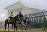 FILE - In this May 15, 2014, file photo, Preakness contender Kid Cruz, left, with exercise rider Reul Munoz aboard, walks past the grandstand after a workout under a thick layer of fog at Pimlico Race Course in Baltimore. The future of Pimlico has turned into a tug of war involving city officials, who want it to stay in Baltimore, and the owners of the track, who long to move the second jewel of the Triple Crown to nearby Laurel. (AP Photo/Patrick Semansky, File)