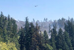 A helicopter flies over fires burning on a ridge in Sumner, Wash., Wednesday, Sept. 9, 2020. Windblown wildfires raging across the Pacific Northwest destroyed hundreds of homes in Oregon, the governor said Wednesday, warning: