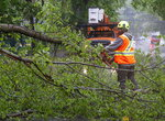 A worker removes a fallen tree blocking a road in Dartmouth, Nova Scotia. as Hurricane Dorian approaches on Saturday, Sept. 7, 2019. Despite gradually transitioning to a post-tropical storm, Dorian will continue to be as strong as a Category 1. (Andrew Vaughan/The Canadian Press via AP)