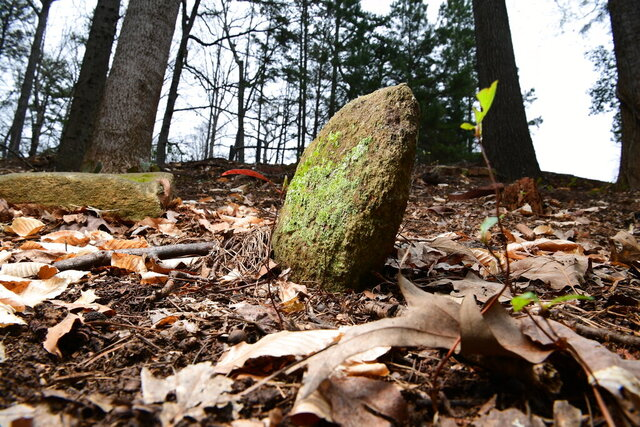 This Wednesday, March 18, 2020 photo, shows unmarked stones on a hill on the edge of Woodland Cemetery, also known as Cemetery Hill, near Memorial Stadium at Clemson University in Clemson, S.C. Created in the early 20th Century, Woodland Cemetery is a burial ground for prominent Clemson University figures — presidents, professors and football coaches are all buried in the hilltop plot beside Memorial Stadium. (Ken Ruinard/The Independent-Mail via AP)