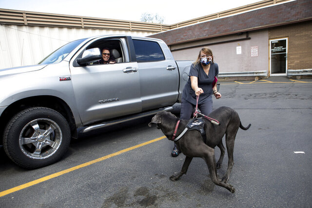 In this Thursday, May 21, 2020, photo, Tammy Reid laughs while getting out of her truck to help Savanah Hendershott, a vet technician, return Blue, her 1-year-old Great Dane, after a visit to Sugar House Veterinary Hospital in Salt Lake City. The hospital is open to pets only amid the coronavirus pandemic. Pet owners are asked to call the hospital and wait in the parking lot for a technician to walk their pets inside and return them after their appointment. (Ivy Ceballo/The Deseret News via AP)