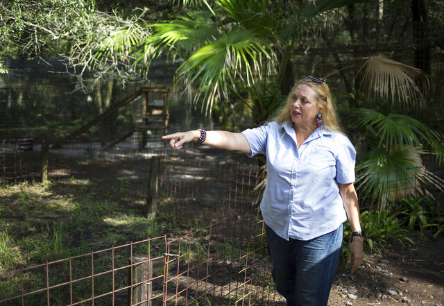 "FILE - In this July 20, 2017, file photo, Carole Baskin, founder of Big Cat Rescue, walks the property near Tampa, Fla. The family of Don Lewis, a Florida man who disappeared in 1997 and who appeared on the hit TV series ""Tiger King,"" has hired a lawyer and is offering $100,000 in exchange for information to help solve the case. Attorney John Phillips held a news conference Monday, Aug. 10, 2020 and announced the investigation into Don Lewis' disappearance.  (Loren Elliott/Tampa Bay Times via AP, File)"
