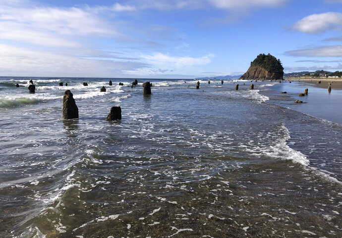In this Thursday, Aug. 1, 2019, photo, evidence of a Cascadia earthquake's awesome destructive power is visible at the beach in Neskowin, Ore. A
