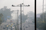 Birds sit on street lights as city enveloped under thick smog in New Delhi, India, Tuesday, Nov. 12, 2019. A thick haze of polluted air is hanging over India's capital, with authorities trying to tackle the problem by sprinkling water to settle dust and banning some construction. The air quality index exceeded 400, about eight times the recommended maximum. (AP Photo/Manish Swarup)