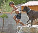 Jack White leaps into his grandparents' backyard pool in the heat at their home on the Yuma Mesa, Ariz., Thursday, June 17, 2021, while the family dog Jackson looks on. (Randy Hoeft/The Yuma Sun via AP)