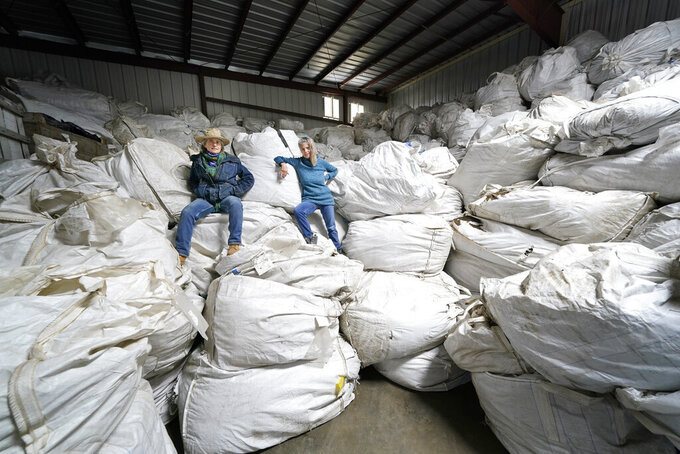 Gail Hepworth, right, and Amy Hepworth, sisters and co-owners  of Hepworth Farms, pose for a picture on bags full of hemp plants at Hepworth Farms in Milton, N.Y., Monday, April 12, 2021. Farmers dealing with depressed prices for plants that produce CBD extract are eager to take part in a statewide marijuana market expected to generate billions of dollars a year once retail sales start. They already know how to grow and process cannabis plants, since hemp is essentially the same plant with lower levels of THC, marijuana's active ingredient. Now they're waiting on rules that will allow them to switch seeds. (AP Photo/Seth Wenig)