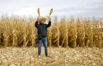 In this Oct. 12, 2019, photo, Serhii Halusyn, a farmer who leases land from people in the village of Nebelytsia, Ukraine, plays with ears of corn as speaks with The Associated Press. Most of Ukraine's rich farmland is carved up into small plots owned by about 7 million people. They are forbidden by law from selling it, although Ukraine's new president wants to change that. (AP Photo/Andrew Mosienko)
