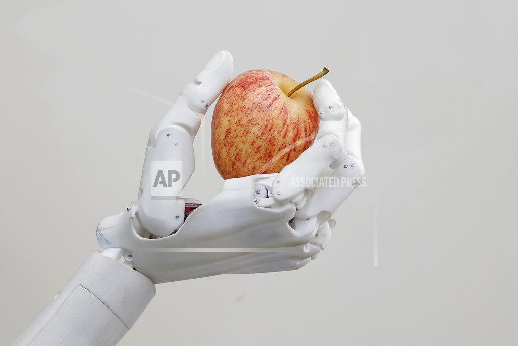 Hong Kong Robot Designer