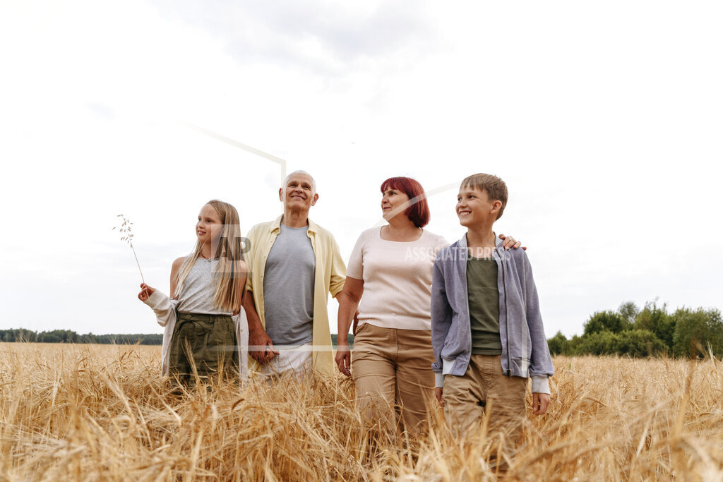 Siblings walking with grandparents on wheat field