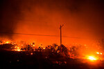 Trees and other vegetation are consumed by the Bobcat Fire in Juniper Hills, Calif., Friday, Sept. 18, 2020. (AP Photo/Ringo H.W. Chiu)