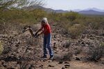 Terry Stanford, a volunteer with Tucson Samaritans, shakes out a discarded camouflage garment left by a migrant or cartel member near Three Points, Ariz., on Tuesday, May 18, 2021. Faith-based groups like the Tucson Samaritans leave water and food in the Sonoran Desert. (AP Photo/Ross D. Franklin)