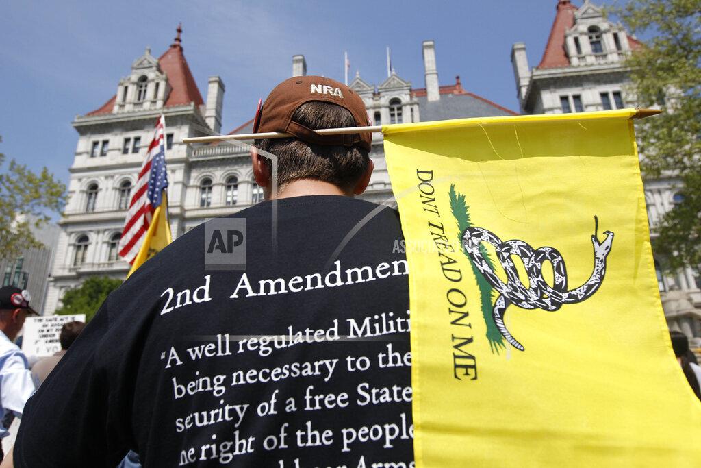 NY Gun Law Rally