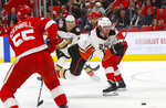 Anaheim Ducks' Ondrej Kase (25) loses the puck after tripping against the Detroit Red Wings in the first period of an NHL hockey game Tuesday, Feb. 13, 2018, in Detroit. (AP Photo/Paul Sancya)