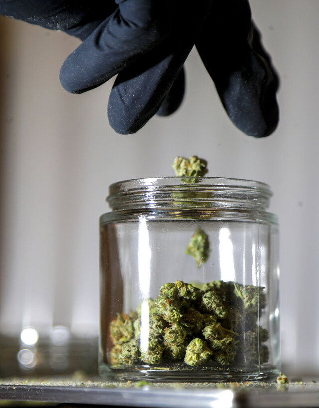 FILE - In this March 22, 2019, file photo, marijuana buds are sorted into a prescription jar at Compassionate Care Foundation's medical marijuana dispensary in Egg Harbor Township, N.J. A New Jersey Assembly voting session that had been scheduled for Monday, Nov. 23, 2020, that was to include a measure setting up the new recreational marijuana market has been canceled, Assembly Speaker Speaker Craig Coughlin said Friday, Nov. 20. (AP Photo/Julio Cortez, File)