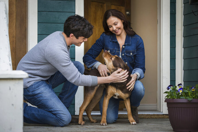 This image released by Sony Pictures shows Jonah Hauer King, left, and Ashley Judd, with dog Shelby, portraying Bella, in a scene from Columbia Pictures'