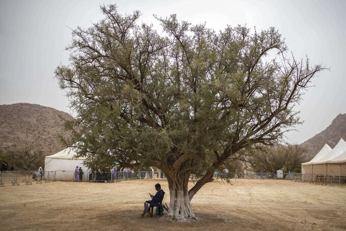 A man sits under an Argan tree as he waits to receive medical help outside a military field hospital set up by Moroccan and U.S doctors as part of a humanitarian civic assistance during the African Lion military exercise in Tafraout, southern Morocco, Thursday, June 10, 2021. With more than 7,000 participants from nine nations and NATO, African Lion is U.S. Africa Command's largest exercise. (AP Photo/Mosa'ab Elshamy)