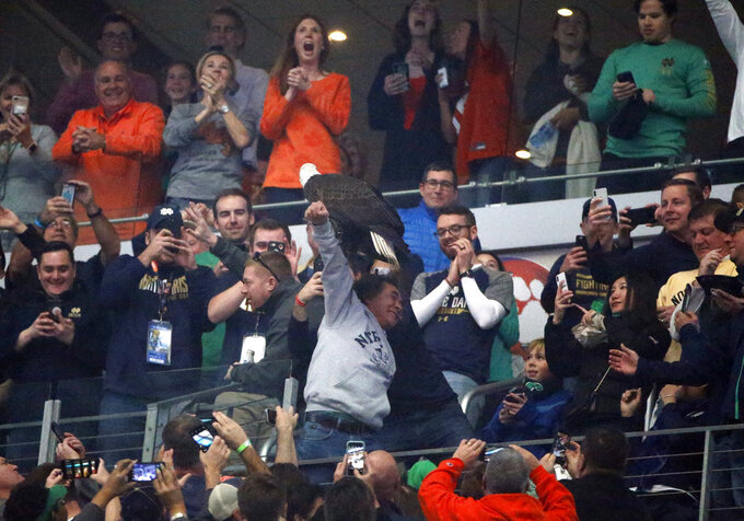 "Fans cheer as ""Clark"" and American bald eagle lands on the arm of a fan in the upper deck after the playing of the national anthem before the first half of the NCAA Cotton Bowl semi-final playoff football game between Clemson and Notre Dame on Saturday, Dec. 29, 2018, in Arlington, Texas. (AP Photo/Michael Ainsworth)"