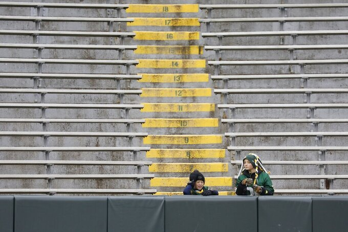 Fans are seen inside Lambeau Field before an NFL football game between the Green Bay Packers and the Carolina Panthers Sunday, Nov. 10, 2019, in Green Bay, Wis. (AP Photo/Jeffrey Phelps)