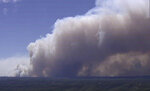 In this image made from video, huge plumes of smoke billow from trees on fire in Gospers Mountain, New South Wales, Australia, Friday, Nov. 15, 2019.  At least 50 homes were damaged or destroyed in New South Wales on Tuesday by wildfires that had burnt into the suburbs of Sydney, Australia's largest city.(Australia Pool via AP)