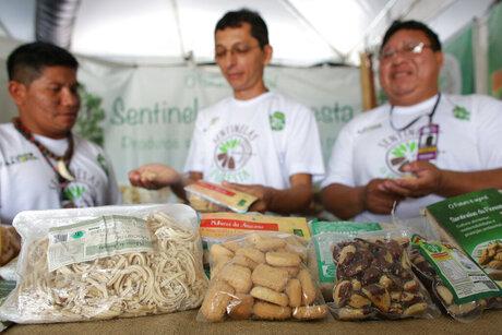 Brazil Amazon Nuts