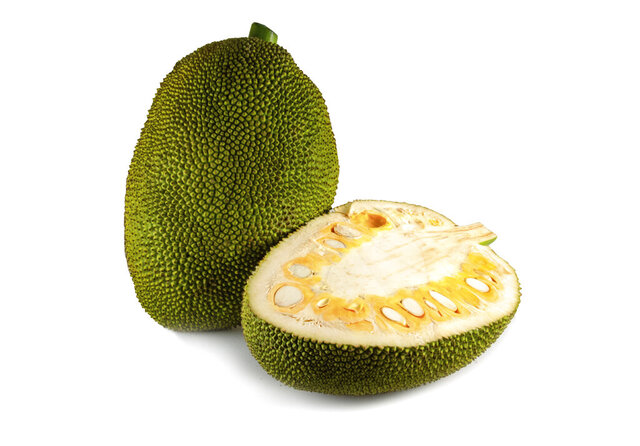 This image released by Melissa's Produce shows a Jackfruit, a large tropical fruit often used as a meat substitute. It's available as a whole fruit or sometimes sliced into more manageable, usable pieces. Unripe, it's green and unyielding; as it ripens, it softens, turns yellow, gets some brown spots and smells fruity.  (Melissa's Produce via AP)