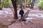 In this Nov. 29, 2019, photo, an unidentified man is seen crossing a flooded campground in Supai, Arizona. A popular tourist spot deep in a gorge off the Grand Canyon was flooded over the holiday, sending tourists scrambling to higher ground. The flood happened just days before the Havasupai Tribe shuts down its reservation to tourists for the season. No one was injured but some tourists woke up drenched and some lost camping gear. (Mandy Augustin via AP)