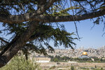The Dome of the Rock and al-Aqsa mosque compound in Jerusalem, which remains shut to prevent the spread of coronavirus during the holy month of Ramadan, is seen from an overlook on Friday, May 1, 2020. (AP Photo/Ariel Schalit)