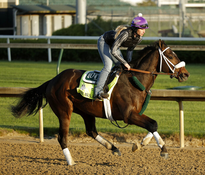 FILE - In this May 1, 2018, file photo, Kentucky Derby hopeful Bravazo runs during a morning workout at Churchill Downs in Louisville, Ky. Hall of Fame trainer D. Wayne Lukas brings back Bravazo, who finished sixth in the Derby, along with Sporting Chance, to take on Derby winner Justify on Saturday in the Preakness. (AP Photo/Charlie Riedel, File)