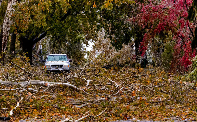 Broken tree limbs cover the road on NW 14th St. in Oklahoma City, Okla. on Tuesday, Oct. 27, 2020, after a winter blast covered the state with ice. (Chris Landsberger/The Oklahoman via AP)