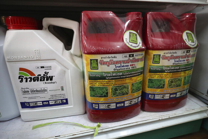 In this Friday, Oct. 18, 2019, photo, containers of the herbicide glyphosate are for sale at a farm supply store in Nakhon Phanom Province, northeast Thailand. Thailand's government has agreed to ban the use of the herbicides paraquat and glyphosate and the insecticide chlorpyrifos, all widely regarded as dangerous to human health, starting Dec. 1. (AP Photo/Sakchai Lalit)