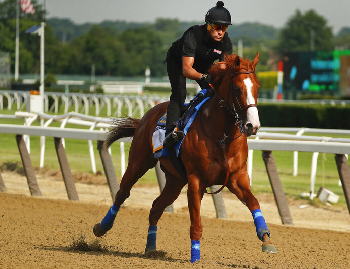 Triple Crown hopeful Justify gallops around the main track during a workout at Belmont Park, Friday, June 8, 2018, in Elmont, N.Y. Justify will attempt to become the 13th Triple Crown winner when he races in the 150th running of the Belmont Stakes horse race on Saturday. (AP Photo/Julie Jacobson)