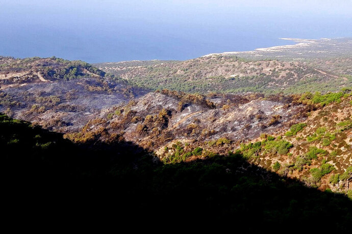 This Wednesday, Nov. 13, 2019 photo provided by the Cyprus Forest Department, shows the results of forest fire, in Akamas Peninsula. Cyprus' president is vowing to go ahead with creating a national park in a largely untouched area of the tourism-reliant island, following a string of deliberately-set forest fires that were blamed on local landowners' development plans. (Cyprus Forest Department via AP)