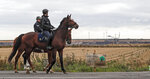 Police officers on horses secure the Garzweiler surface coal mine, passing a sign reading 'climate activism is not a crime' near Keyenberg, Germany, Friday, Sept. 25, 2020. Several groups like 'Friday for Future' or 'Ende Gelaende' started actions for climate justice in the coming days throughout Germany. The movement demands that the German government phase out coal by 2030 and make Germany carbon neutral by 2035. (AP Photo/Martin Meissner)