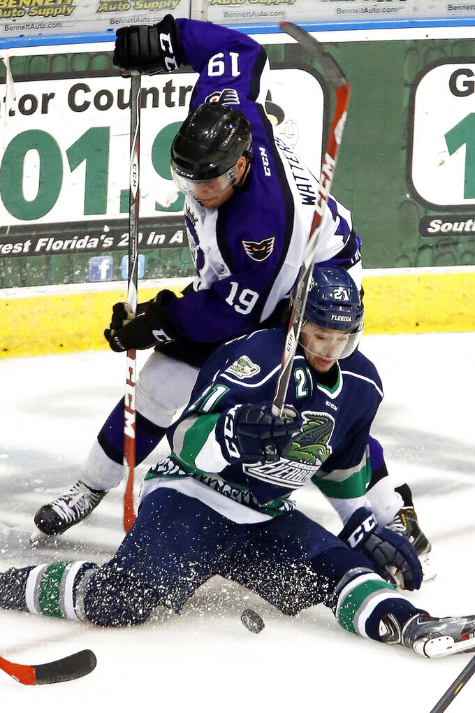 FILE - In this April 1, 2015, file photo, Florida Everblades' Spencer Pommells, bottom, is pressured by Reading Royals' Ian Watters (19) duirng the third period of an ECHL hockey game in Estero, Fla. The ECHL season was canceled because of the coronavirus pandemic. (AP Photo/Naples Daily News, Core Perrine)