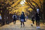 People wearing protective masks to help curb the spread of the coronavirus walk through the row of ginkgo trees along the sidewalk as the trees and sidewalk are covered with the bright yellow leaves Friday, Nov. 27, 2020, in Tokyo.(AP Photo/Kiichiro Sato)