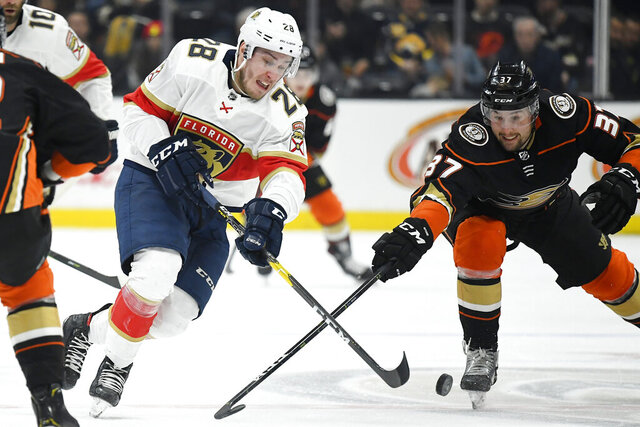 Florida Panthers center Aleksi Saarela, left, and Anaheim Ducks left wing Nick Ritchie vie for the puck during the first period of an NHL hockey game Wednesday, Feb. 19, 2020, in Anaheim, Calif. (AP Photo/Mark J. Terrill)