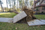 A ponderosa pine is uprooted at a homeowners sidewalk on Wednesday, Jan. 13, 2021, after a windstorm in Spokane, Wash.   (Colin Mulvany/The Spokesman-Review via AP)